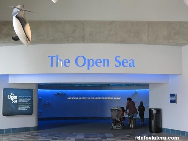 MontereyAquarium4