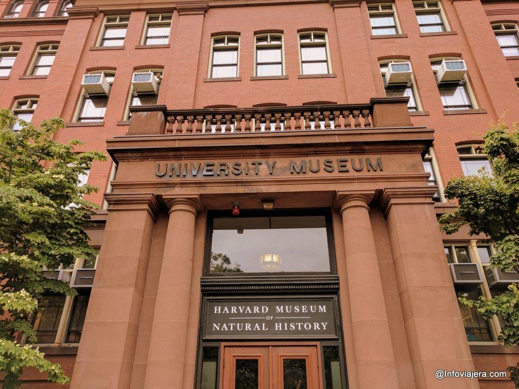 Harvard Salones